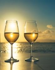 dégustation vins 3